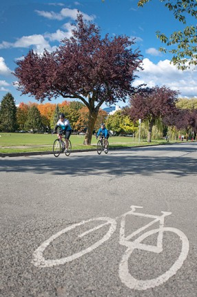 Bike lane in front of Douglas Park - Cambie Neighbourhood