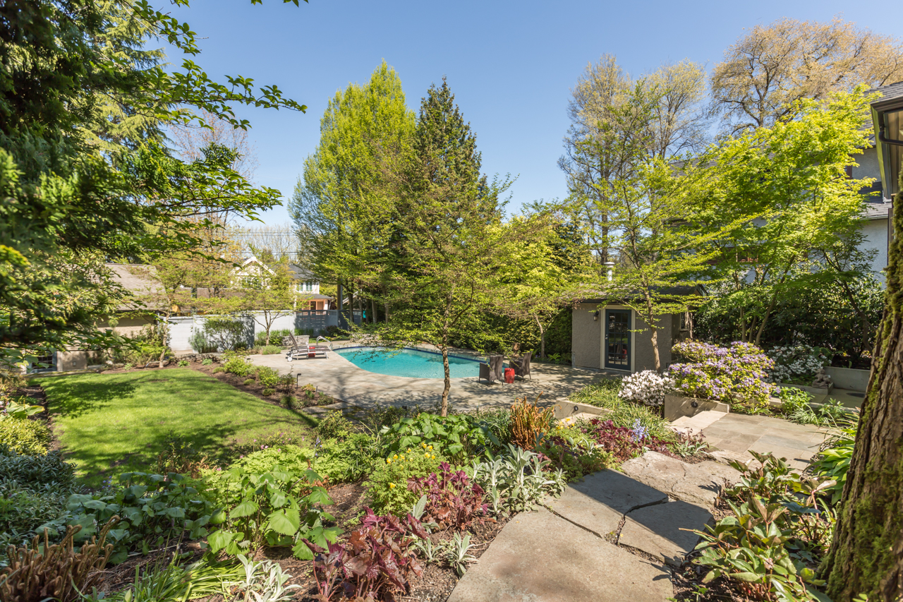 Gorgeous, fully-fenced patio, pool and gardens