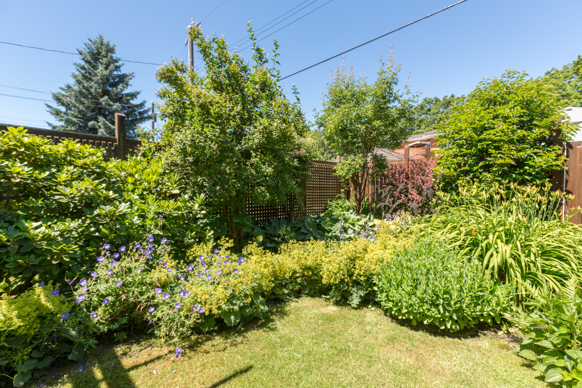 Gorgeous garden and fenced yard - Kitsilano - 3345 West 14th Avenue, Vancouver, BC