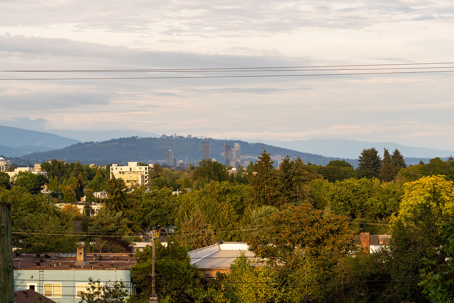 City & Mountain View - Shaughnessy - 1098 Wolfe Avenue, Vancouver, BC