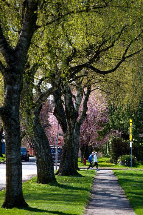 West 62nd Avenue @ Adera Street - South Granville neighbourhood
