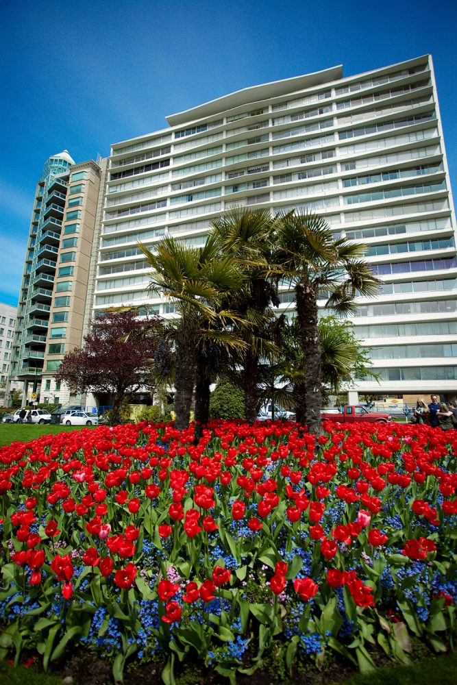 Condo tower and spring flowers - Vancouver West End neighbourhood